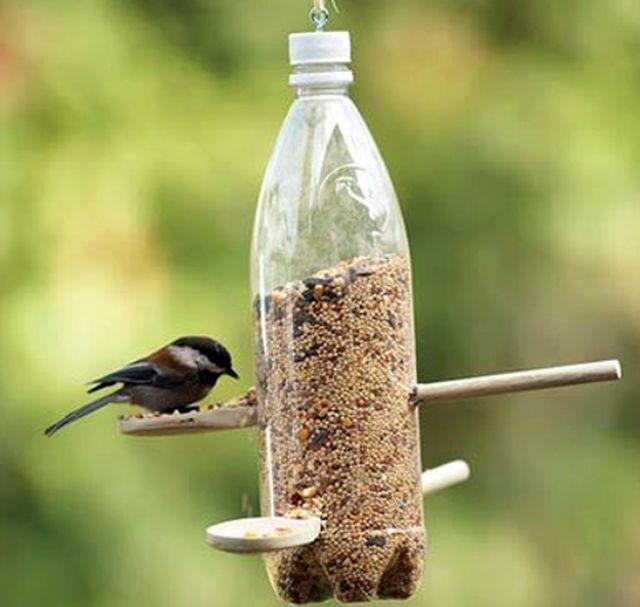 Кормушка своими руками для птиц