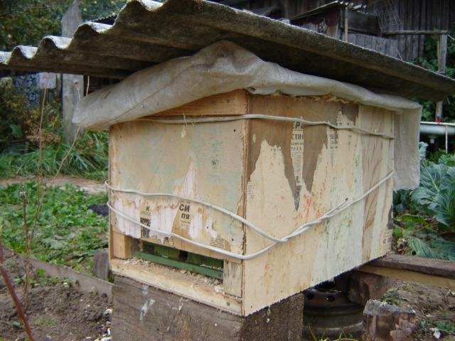 Как сделать ловушку для пчел