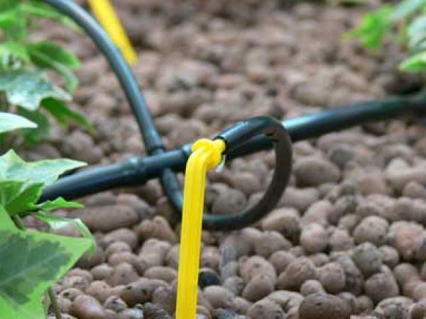 Как сделать распылитель для полива огорода своими руками