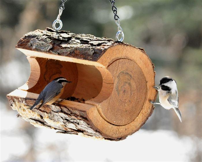 Кормушки для птиц своими руками фото из бутылки