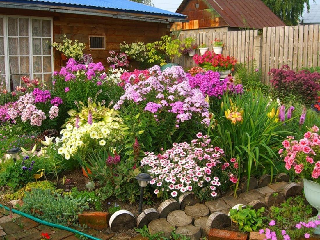 Цветник в огороде своими руками фото