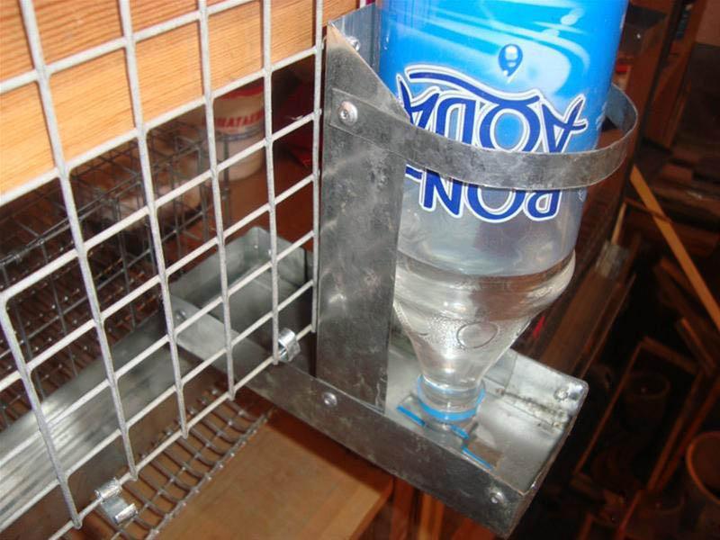 Поилки для кроликов под бутылку своими руками